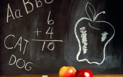schoolenrollment