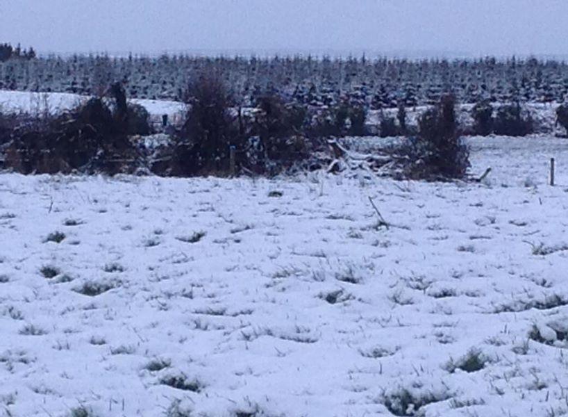 snowkiltullaghkillimordaly9