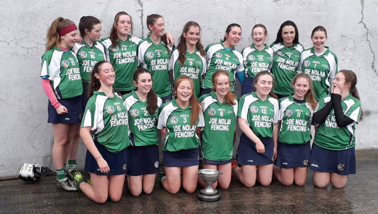 Kiltullagh Killimordaly Camogie Club U16 girls North Board Winners