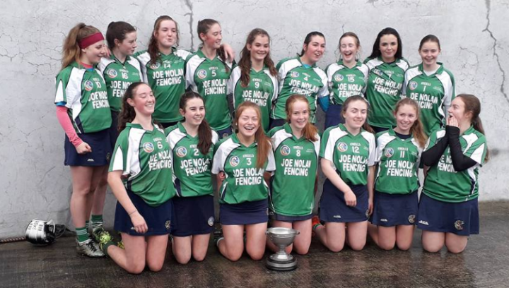 Kiltullagh Killimordaly Camogie Club U16 girls North Board Winners